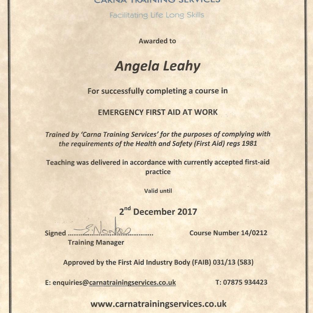 First Aid Certificate AL 2014 7