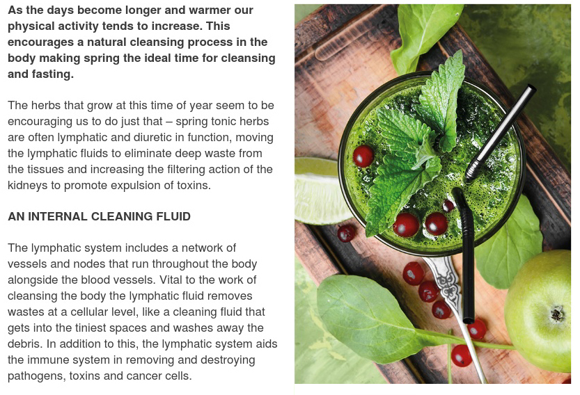Spring Cleansing Herbs to Add to Your Smoothie - Herbal Clinic - Swansea